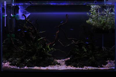 aquaair600-s100p.jpg